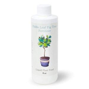 Ficus Plant Food Fiddle Leaf Top Fertilizer