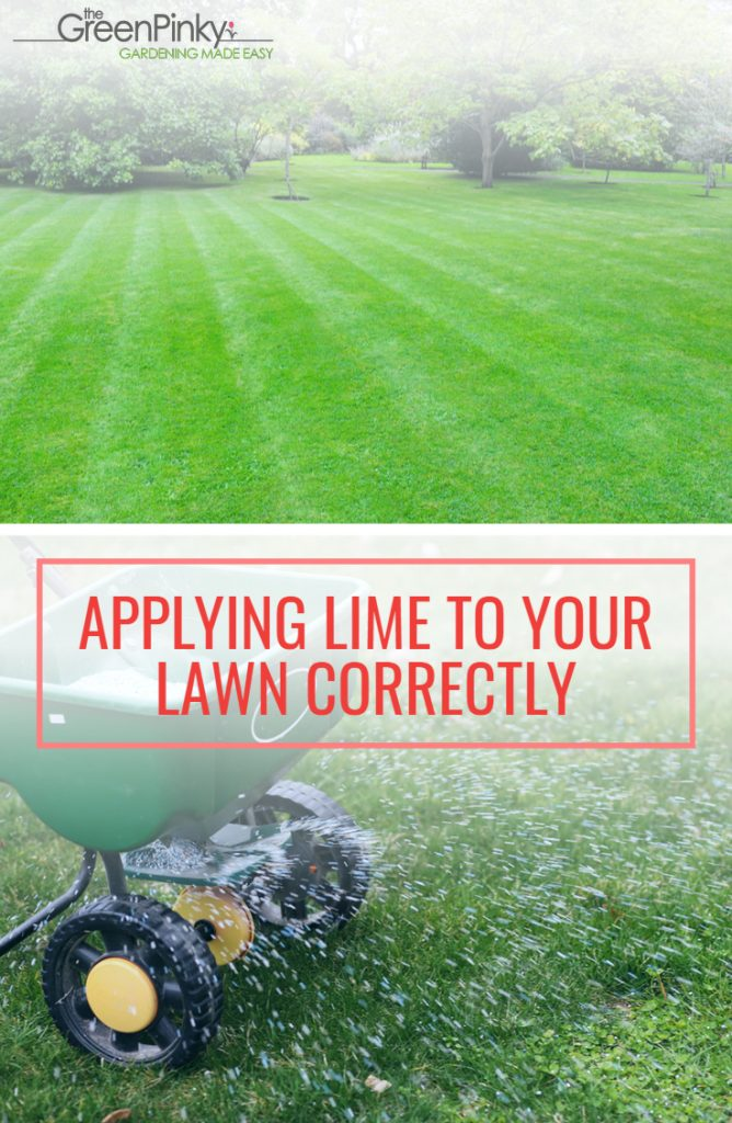 Applying agricultural lime to a lawn appropriately with the use of a guide.