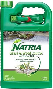 Natria will kill dandelion invasive plants at the roots