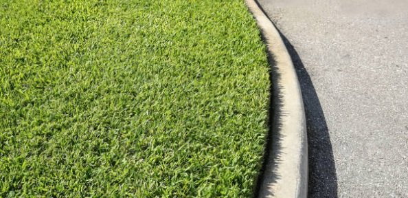 The Best 5 Fertilizers for Centipede Grass