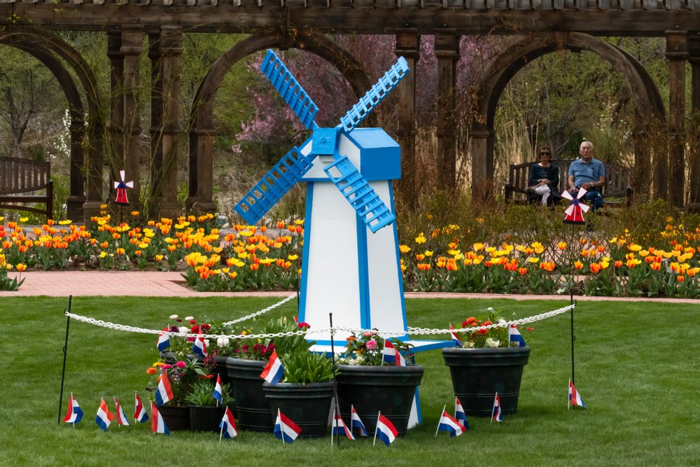 A small blue windmill structure surrounded by yellow and orange tulips in lehi uta