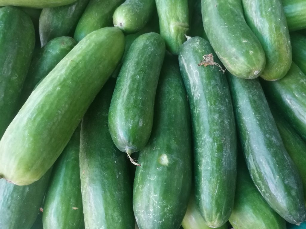 A bunch of luscious green cucumbers stacked on top of each other