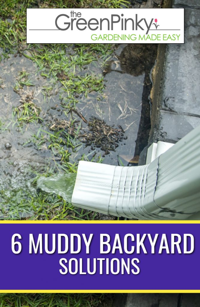 Muddy backyard from stagnant water needs to be fixed with a guide
