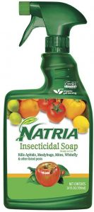 Natria is an insecticidal soap to remove thrips or aphids