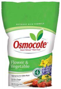 Top fertilizer osmocote will provide proper nutrients