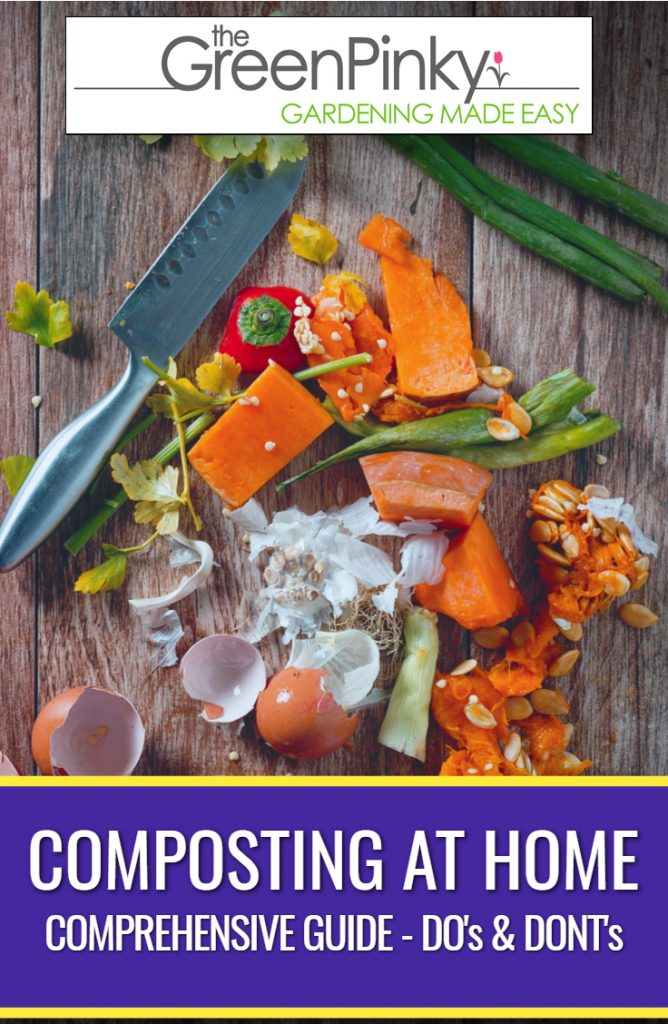 Multiple food scraps make great elements to a compost pile that you can make at home.
