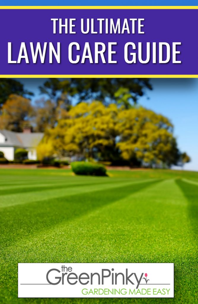 The Ultimate Lawn Care Guide Overview picture. In the picture itself is a beautifully mowed lawn with rows that converge into one single focal point