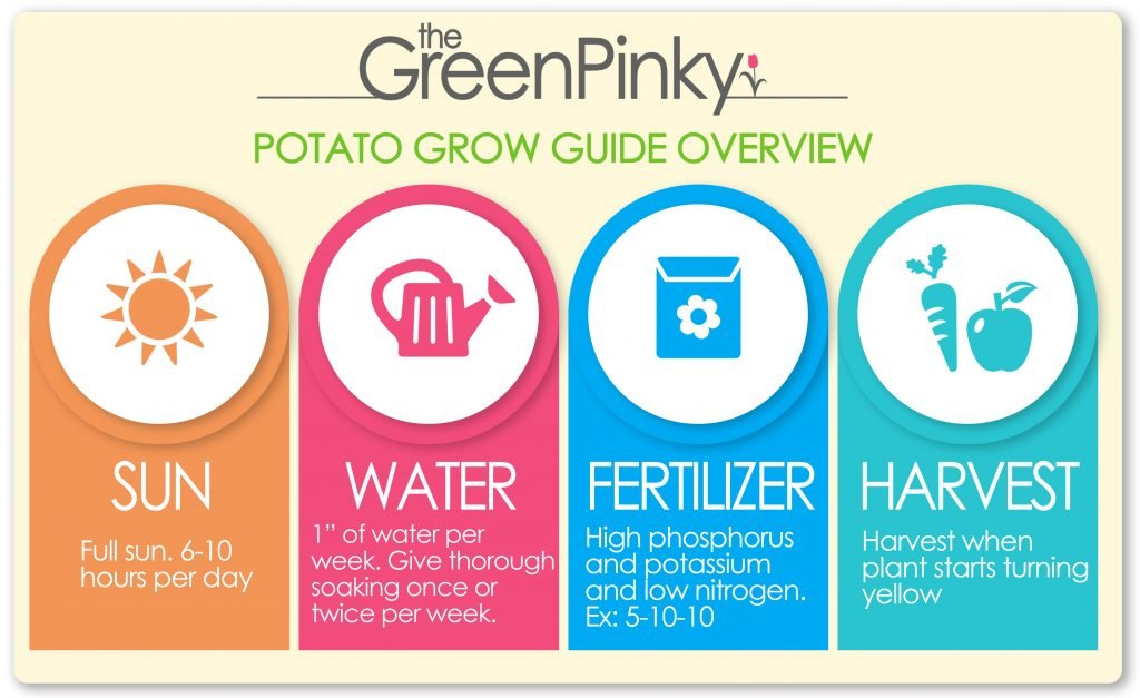 Guide overview image that shows the amount of sun, water, fertilizer and when to harvest.