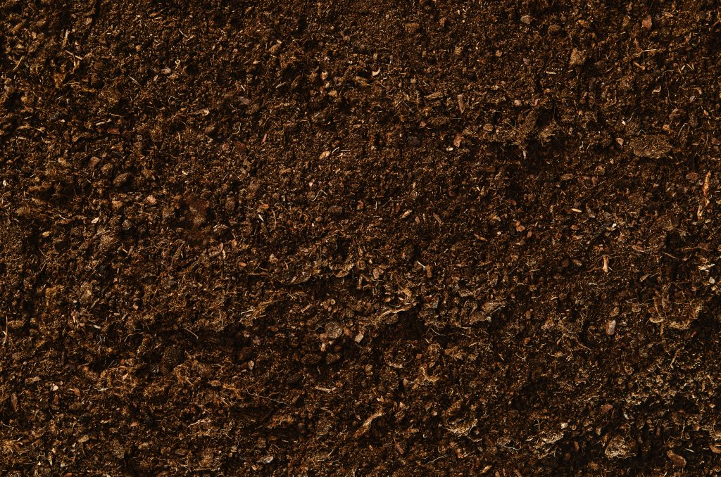 Soil that is ready to be loosened and seeded