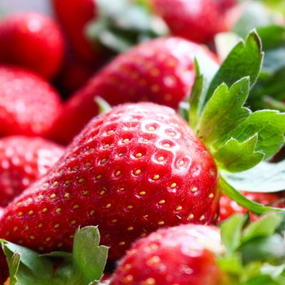 6 Things You Should Know About Harvesting Strawberries