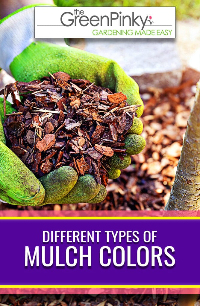 Different colored mulches have different aesthetic appeal and purposes.