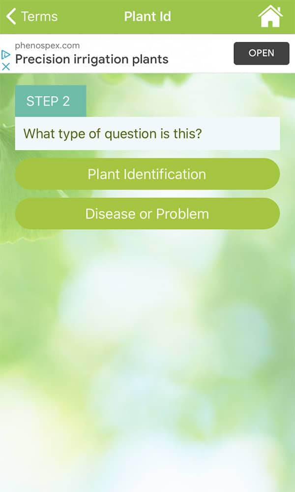 The second step in asking a horticulturist in the garden answers app