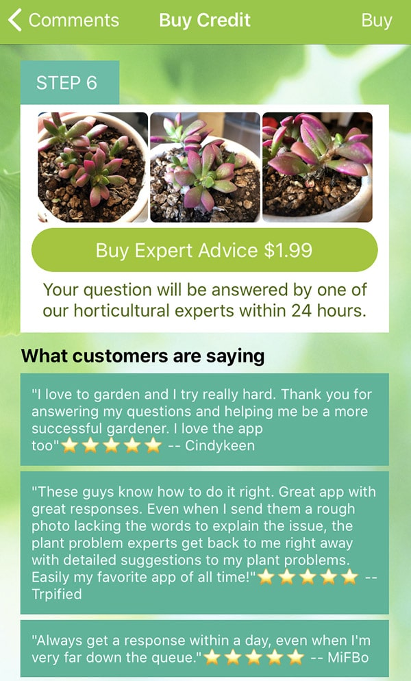 Garden answers app review of its services