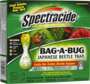 Bag a bug spectracide uses pheromones to attract these beetles and trap them.