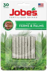 Jobes fertilizer spikes are specially design for ferns and help them grow.