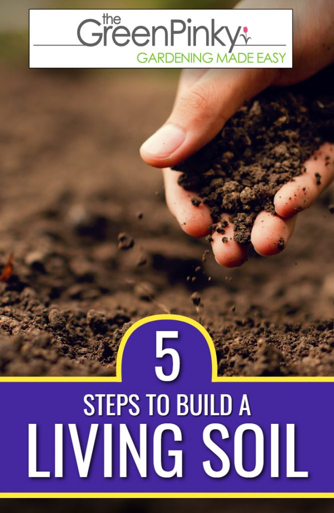 Building a living soil is essential for healthy plants