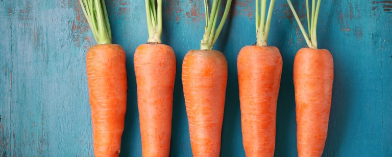 Carrots that have been harvested