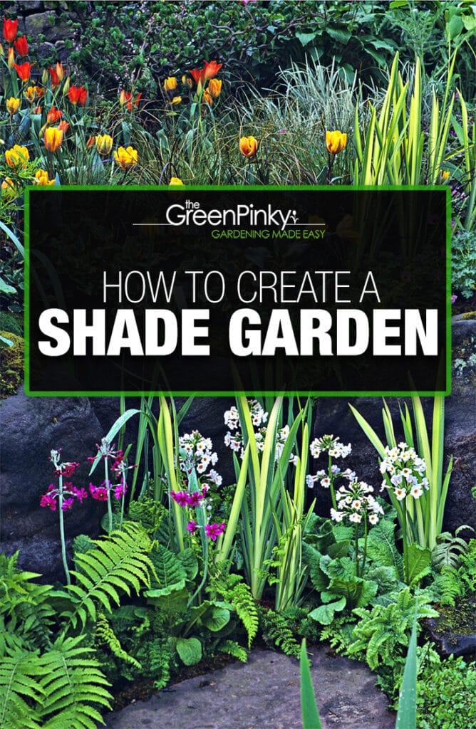 Creating and designing a shade garden is not difficult with a proper guide.