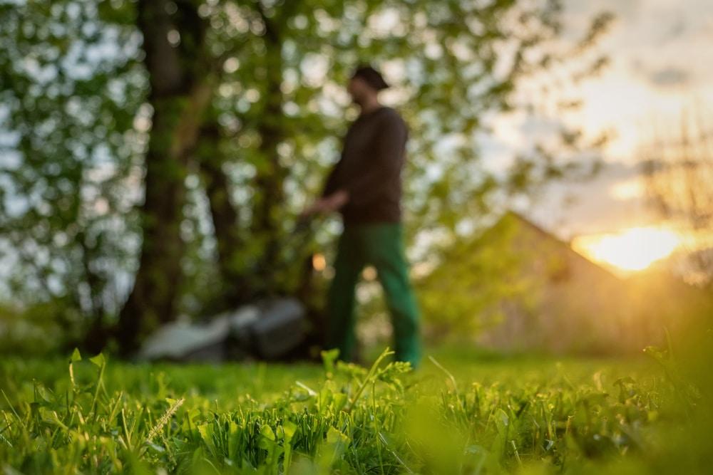 Cutting lawn in morning can disturb neighbors