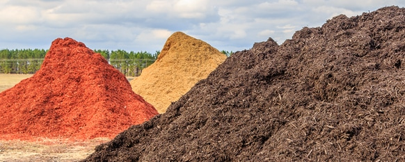 Mulch Colors: What to Consider