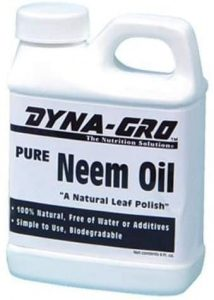 Dyna gro neem oil is another natural repellant to consider to remove thrips