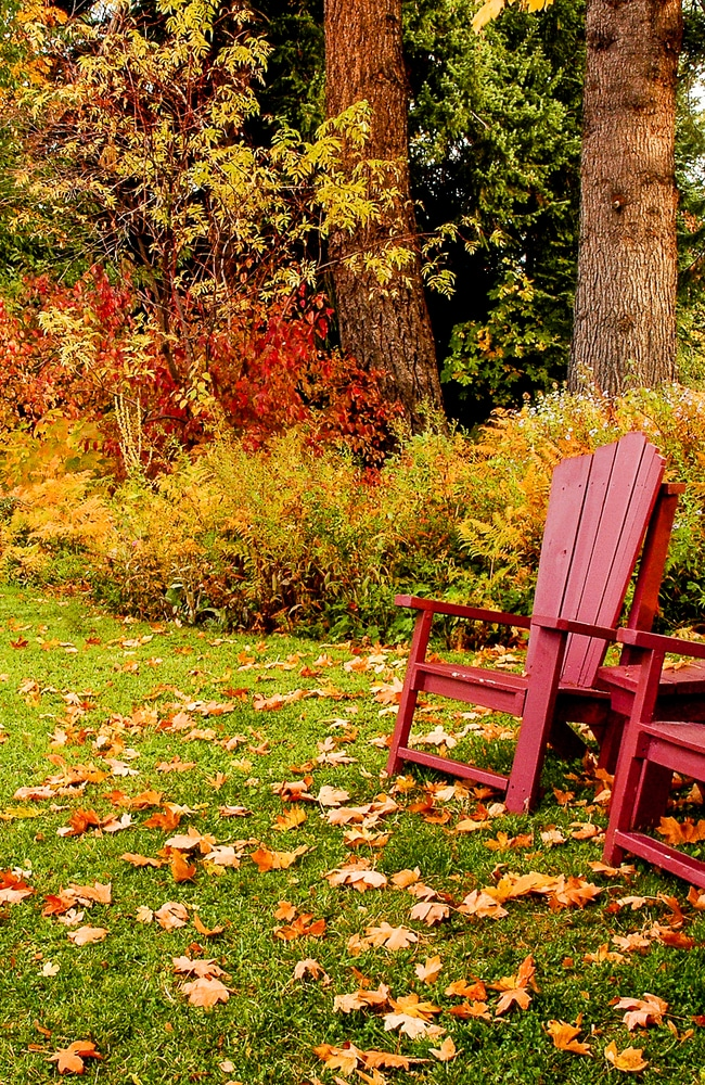 Fall is the best time to apply lawn winterizer