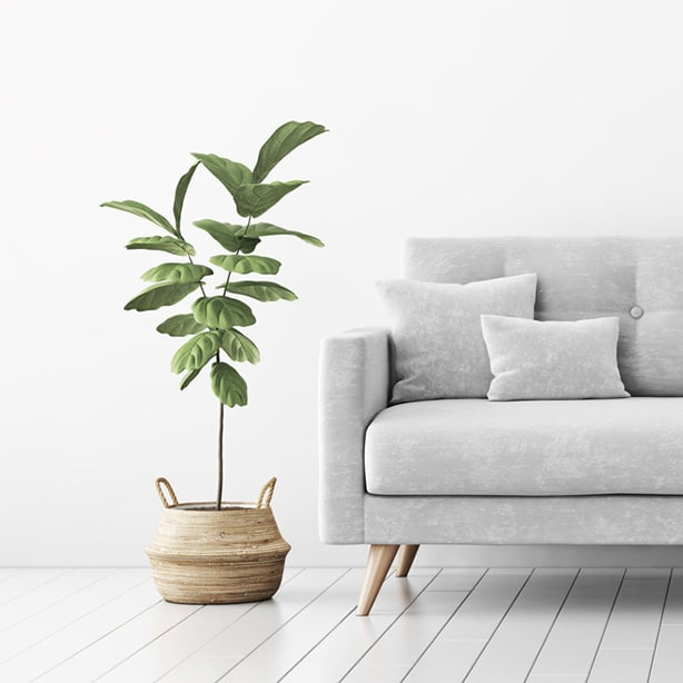 Green foliage adds vitality and life to a neutral tone living space.