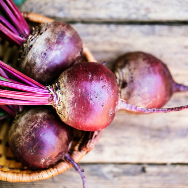 Freshly harvested beets that are ready to be eaten