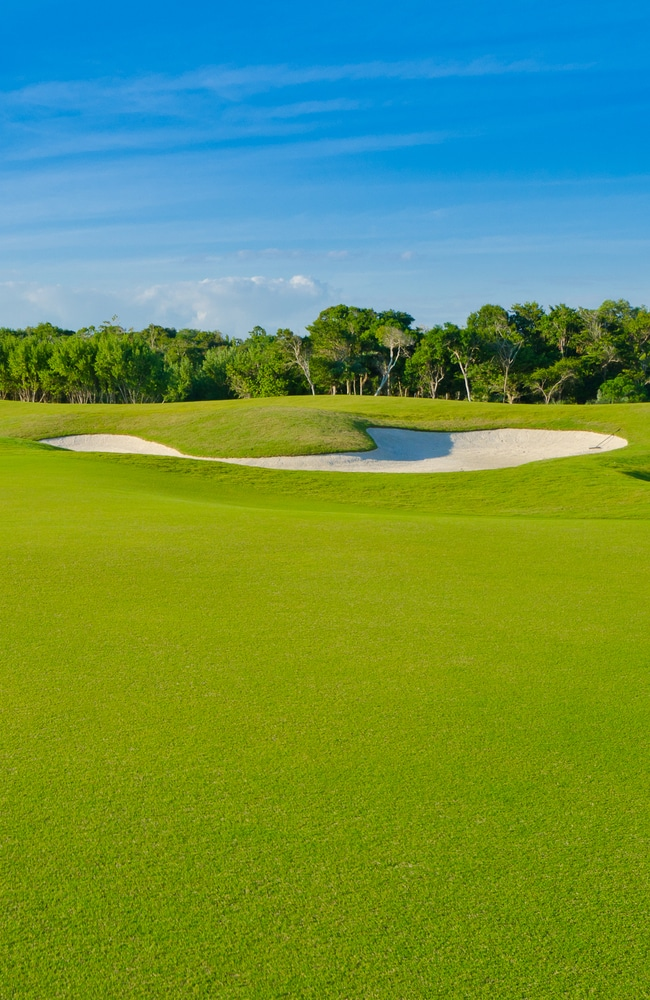 Many golf courses use lawn sand to help create beautiful lawns