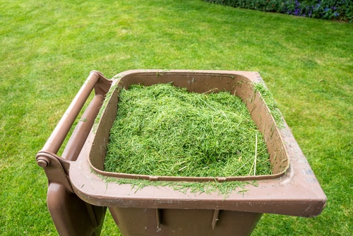 Grass clippings cost money to be hauled off