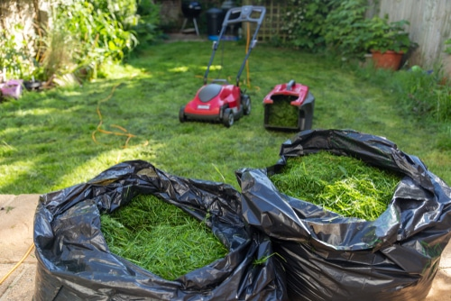 Grass clippings in black trash bags make for a tidy experience
