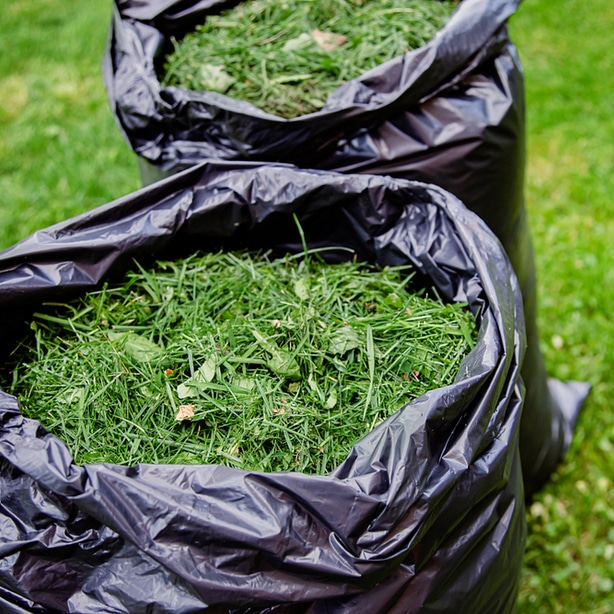 Grass clippings are inexpensive and easy to use, but may not be the most attractive.