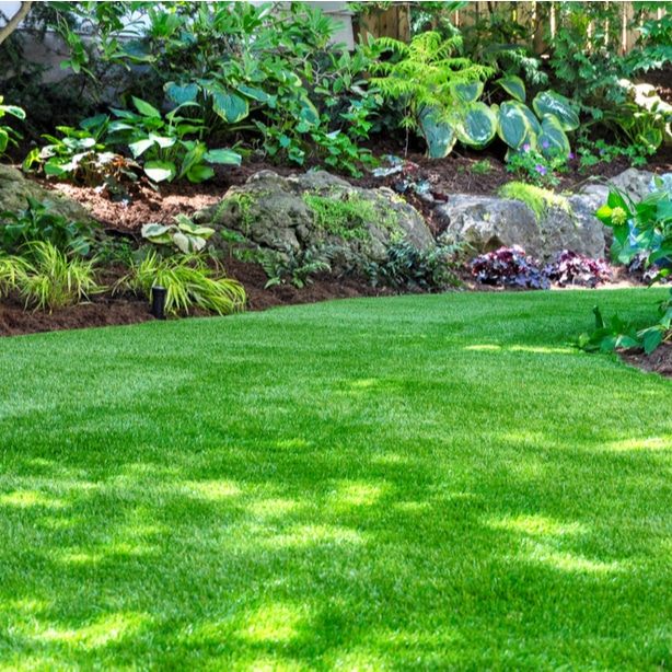 White spots on grass grow better in shaded areas so deal with that first