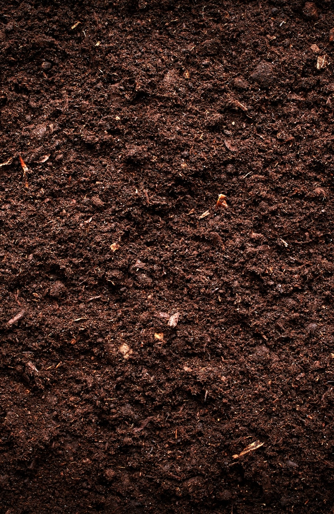 A picture of soil that is ready to have seeds planted into it.