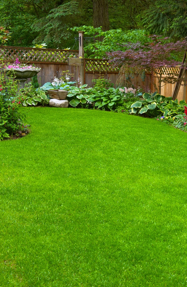 Lawn sand can be used at home too