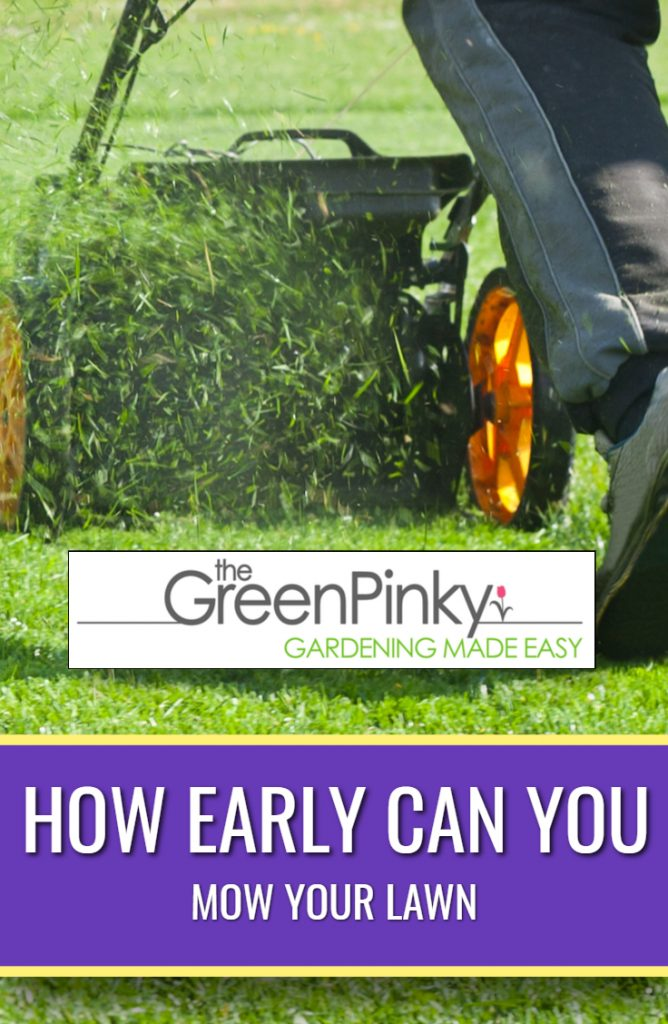 The earliest time to mow your lawn is not always the best time.