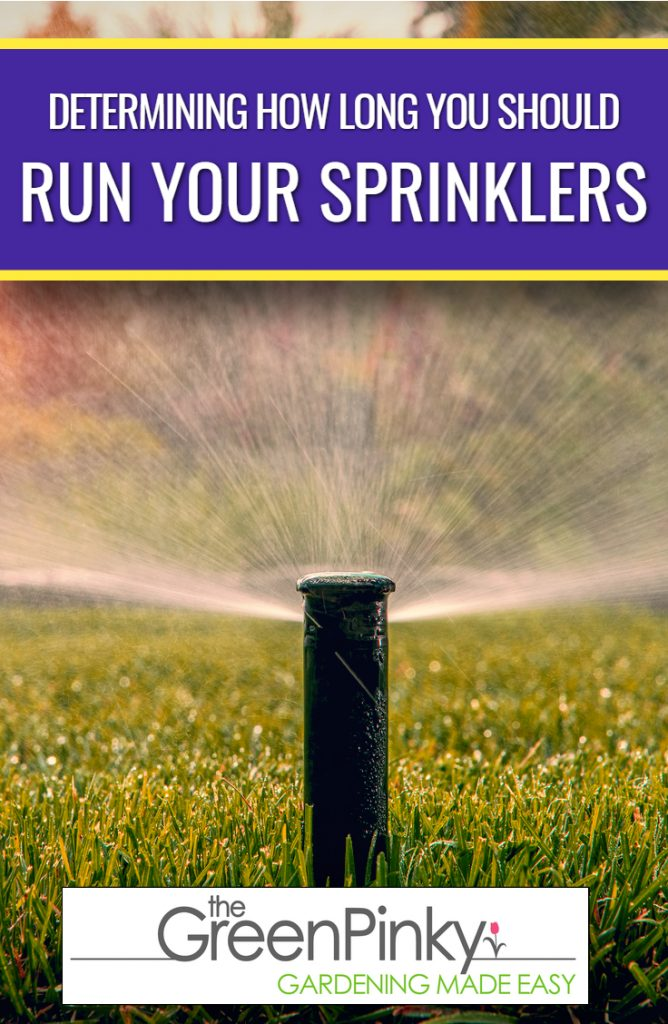 Grass requires appropriate water amount to flourish through this guide