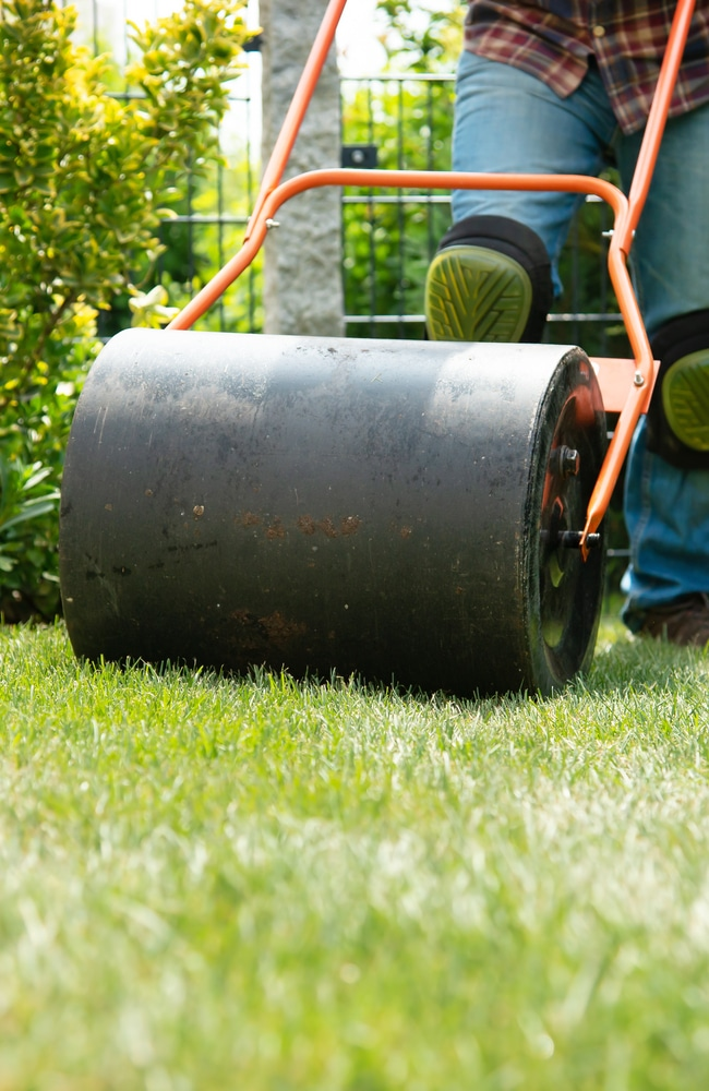 A lawn roller pushes blades of grass in different directions to create patterns.