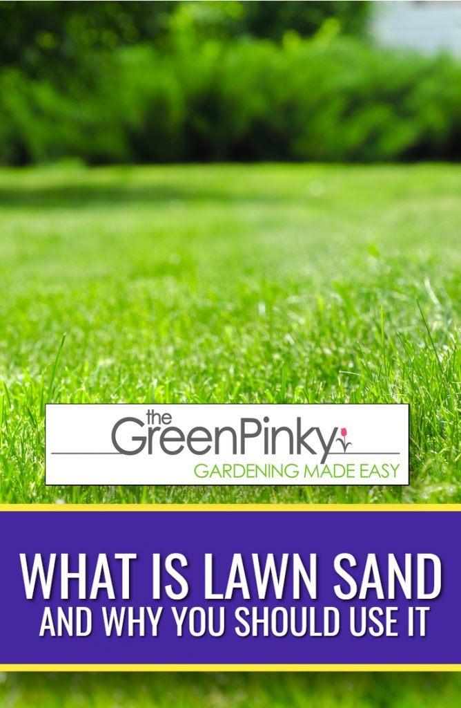 Proper technique needs to be used when using lawn sand through this guide