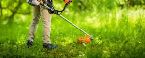 Lawn tools will make maintaining your lawn easier
