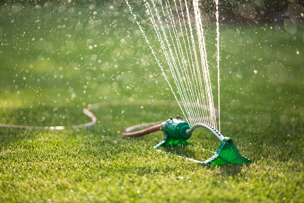 The health of grass is dependent on adequate water