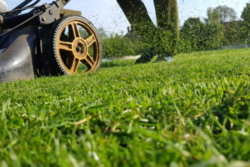 Grass clippings can be left as mulch which is beneficial for the lawn