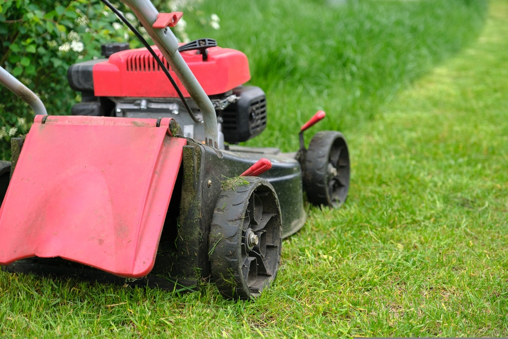 Red lawnmower in action