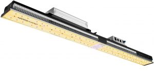 Mars hydro grow light will provide full spectrum to plants for optimal growth