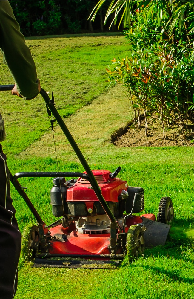 Mow lawn properly by first trimming the perimeter.