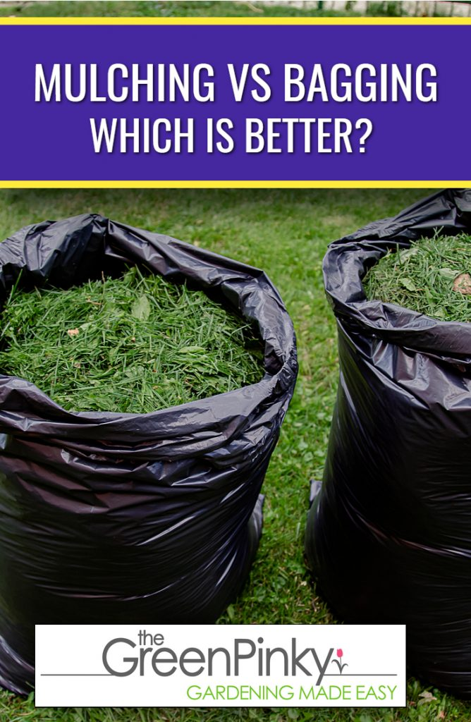 mulching or bagging clippings both have their own advantages