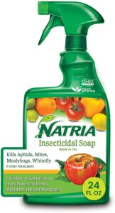 Natria insecticidal soap is a commercial product that can be used on a multitude of pests.