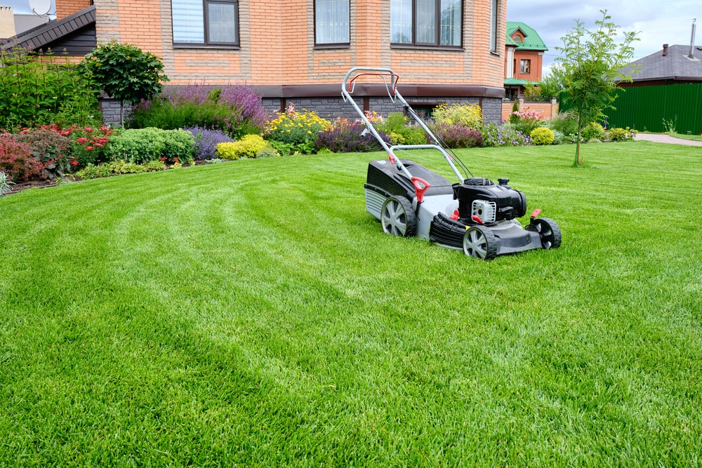 A lawnmower sits in the middle of a yard