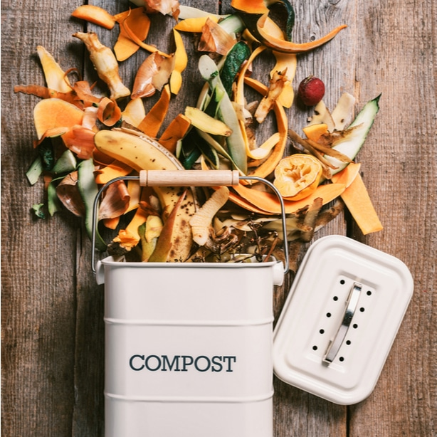Organic materials make the basis of a compost pile