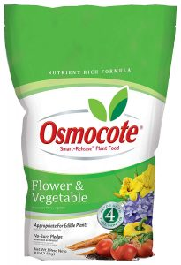Osmocote is smart food for daylilies to develop strong roots
